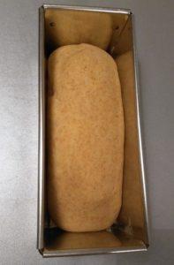 pain de mie à la farine complète à la fin de la pousse