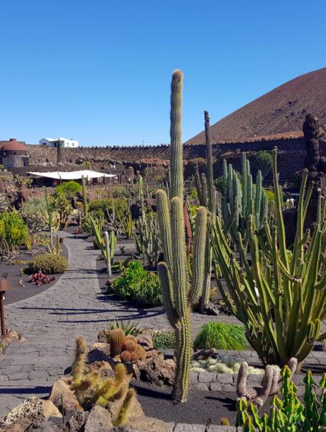Les oeuvres de César Manrique à Lanzarote