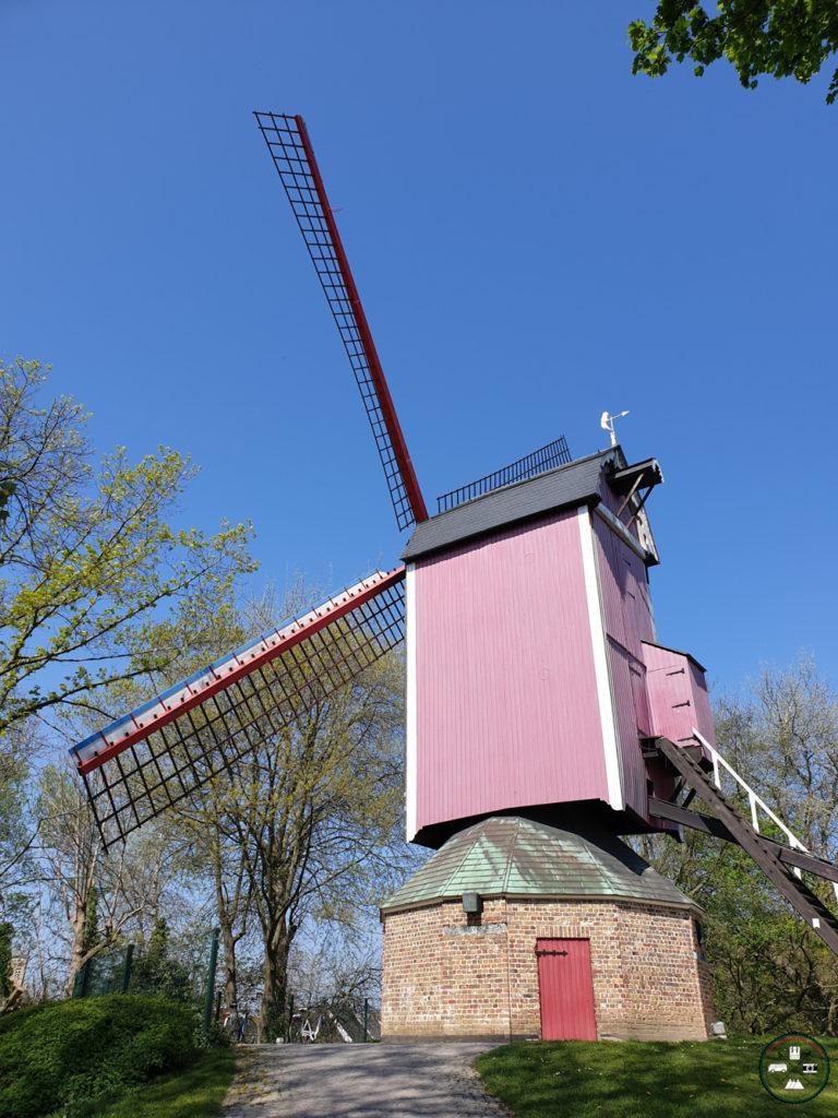 Un moulin à Bruges