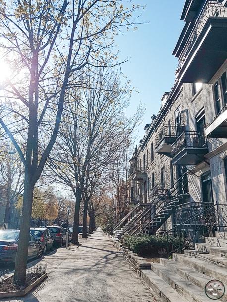 où habiter a montreal, montreal, logement montreal, quartier montreal, arrondissement montreal, appartement montreal