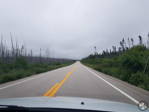 route sur la cote nord