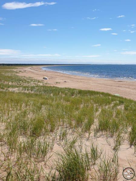 plage sur la cote nord
