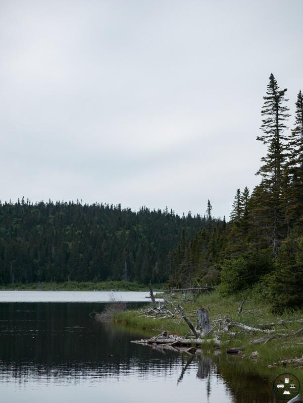 lac sur le sentier les lacs parc forillon quebec